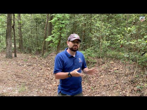 Download Preserved Civil War Earthworks in Bentonville, North Carolina