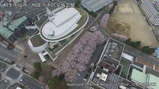 桜 in 桐生市役所・桐生市市民文化会館 1