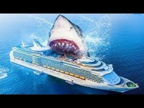 Top 10 Facts About Megalodon Shark That Inspired 'The Meg' Movie