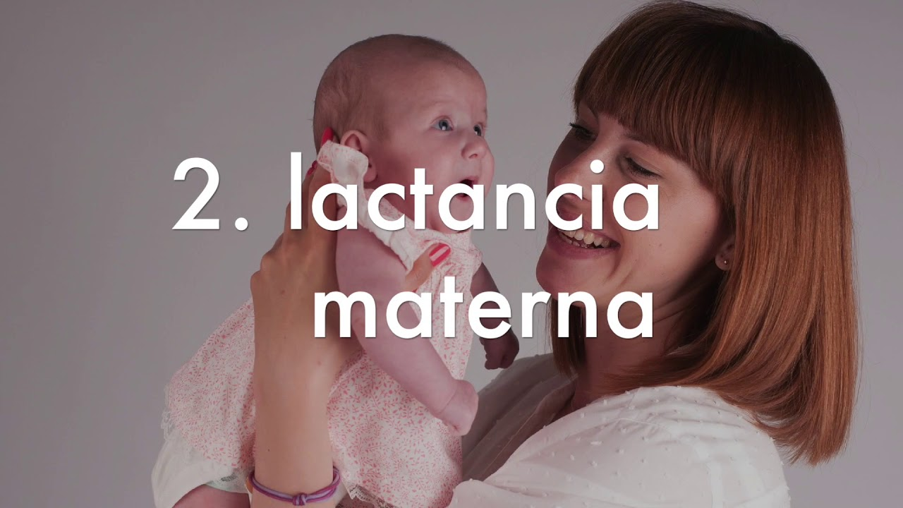 Alcachofa para bajar de peso contraindicaciones del