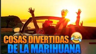 7 COSAS QUE HACER DESPUES DE FUMAR MARIHUANA (60 SEGUNDOS)