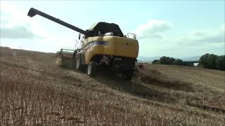 New Holland Combine harvester in action from the cab