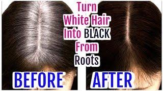 Turn White Hair Into Black From Roots| Grey Hair Hair Oil | SuperPrincessjo