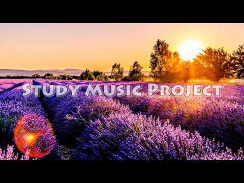 Study Music Project - Love Me More (3 Hour Homework Edit)