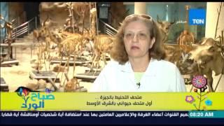 صباح الورد | Sabah El Ward - الفقرة السياحية - متحف التحنيط بالجيزة .. أول متحف حيواني بالشرق الأوسط