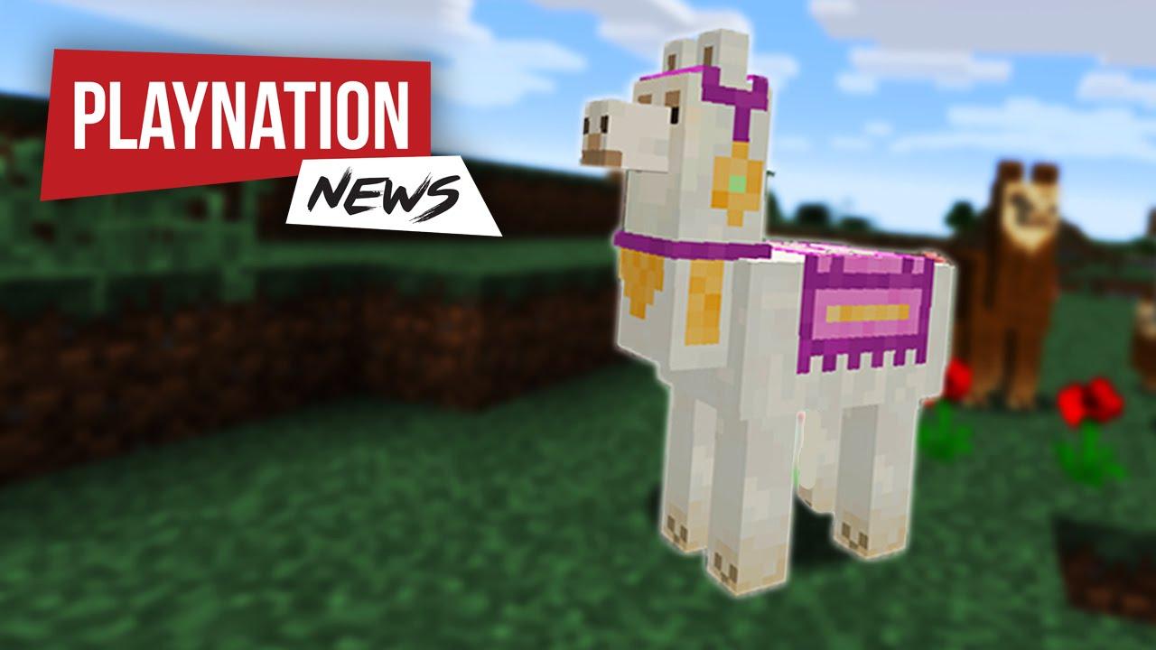 Was essen lamas in minecraft