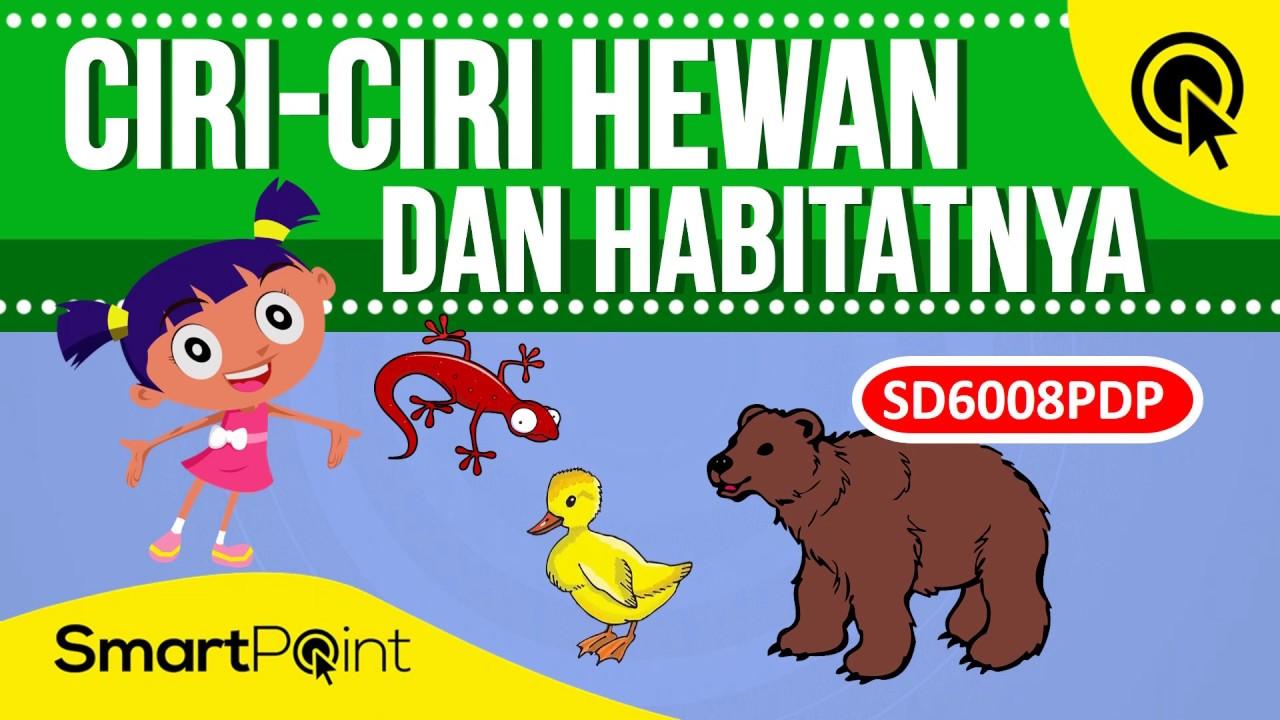 820 Gambar Hewan Dengan Habitatnya HD Terbaru
