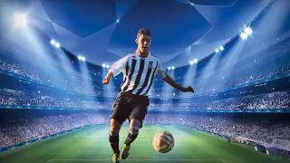 Vukan Damljanovic RB highlights 2019