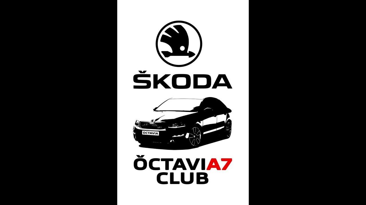 klub-vladeltsev-shkoda