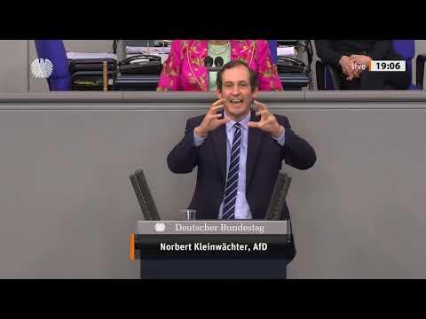 Merkel hat etwas von Pippi Langstrumpf! - Norbert Kleinwächter - AfD