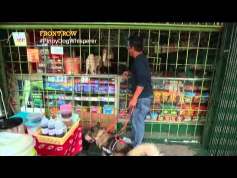 Pinoy dog whisperer showcases his talent in Tondo, Manila | Front Row