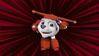 Super Wings, Videos en español para niños con capitulos completos nuevos - Infantiles