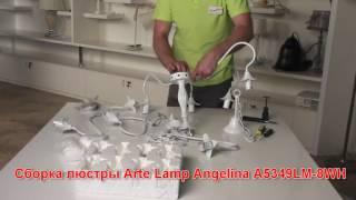 Сборка подвесной люстры Аrte Lamp A5349LM-8WH(Процесс сборки подвесной люстры Аrte Lamp A5349LM-8WH., 2016-08-25T08:39:11.000Z)