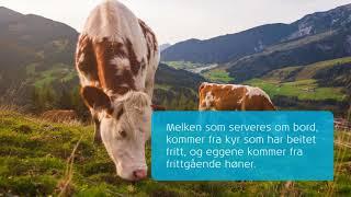 KLM: Måltid i luften – er det bærekraftig?