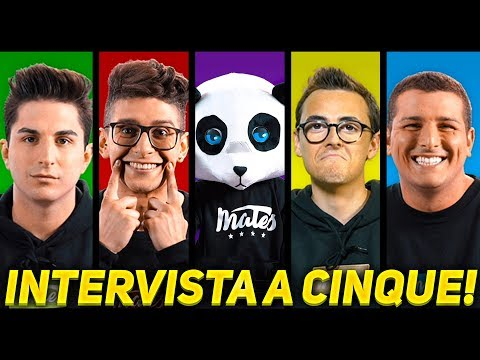 Interview with a PANDA - MATES