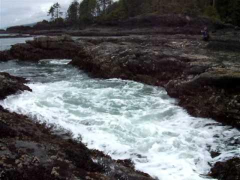 Waves @ Botany Bay