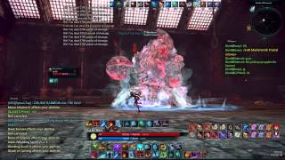 Repeat youtube video Tera Ebon Tower Sorcerer Solo