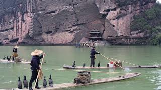 Fishing with Cormorant Birds Jiangxi China