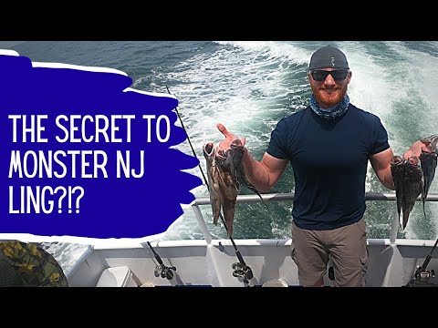 New Jersey Fishing For Sea Bass And Ling On The Norma K III With Bonus Kayak Fluke Fishing!