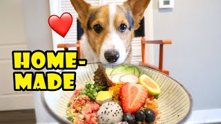 Corgi's Homemade Gourmet Raw Dog Food || Life After College: Ep. 686