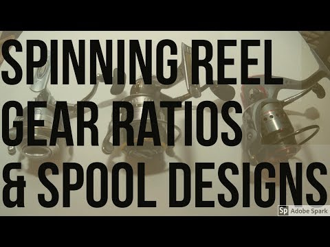 Spinning Reel Gear Ratios/Spools