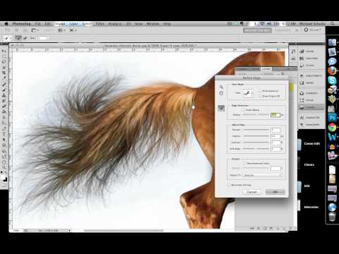 How to Quickly Select Images - Cut Out Detailed Images in Photoshop CS 5