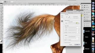 How to Quickly Select Images - Cut Out Detailed Images in Photoshop CS 5 thumbnail