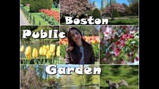 Boston Public Garden - MA com Josi Daresbach