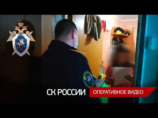 В Череповце провели более 50 обысков и задержали трёх организатороввебкам-студий