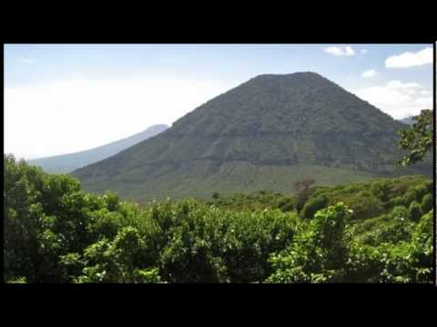 Organic Honduran Marcala Coffee (COMSA)