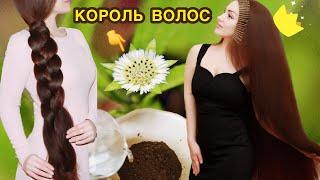 КОРОЛЬ ВОЛОС так называют это средство БРИНГАРАДЖ маска для роста волос и от выпадения