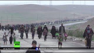 «Они бомбят всех подряд»  жители Мосула гибнут в результате авиаударов западной коалиции