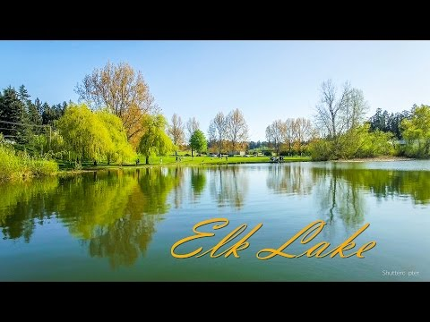 Drone video of summer sunshine on Elk Lake [4K] Victoria, BC