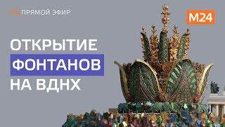 Музыкальное шоу в честь открытия фонтанов на ВДНХ - Москва 24
