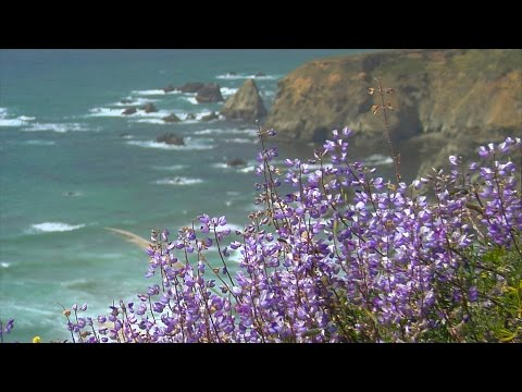 "Relaxing Music, Peaceful Music, Instrumental Music, ""Majestic Sea"" by Tim Janis"