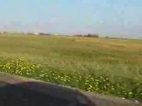 Kıbrıs'ın Baharı - Spring of Cyprus
