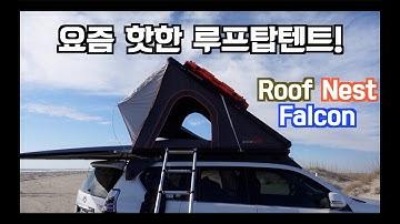 요즘 핫한 루프탑텐트 Roof Nest Falcon 리뷰!