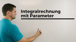 Integralrechnung mit Parameter, Scharfunktion plus gegebener Wert der Fläche/des Integrals