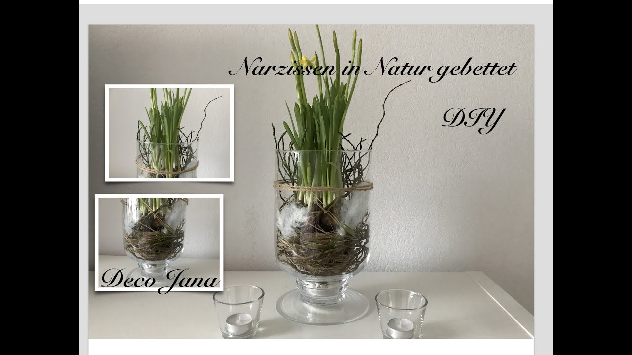 diy fr hling im glas fr hlingsdeko narzissen natur pur deko jana youtube. Black Bedroom Furniture Sets. Home Design Ideas