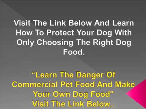 Dog Food Nutrition - Save Your Dog