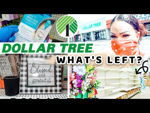 WHAT'S NEW AT DOLLAR TREE SHOP + HAUL 2020 | Sensational Finds