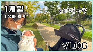 Vlog) 늦가을 산책  feat. 유모차 첫 탑승 |…
