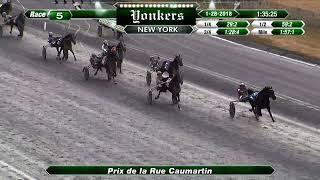 Vidéo de la course PMU PRIX DE LA RUE CAUMARTIN