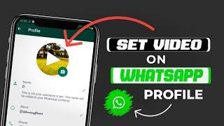 How To Set Profile Video On WhatsApp | WhatsApp DP Me Video Kaise Lagaye