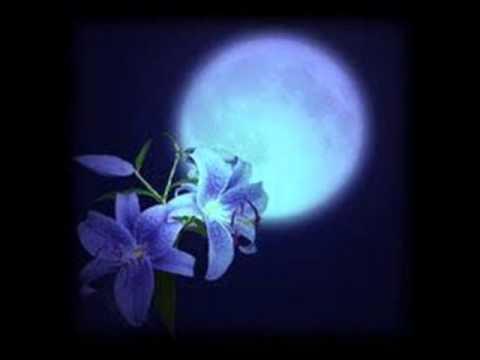 แสงจันทร์ - มาลีฮวนน่า.wmv
