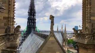 Notre Dame Pre Fire Including Inside Video