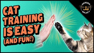 Clicker Training Your Cat is Easy and Fun!