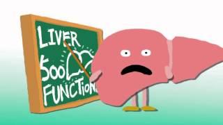 Liverite Liver You! -- Voila.vn