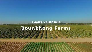 Joe Phavorachith of Bounkhong Farms