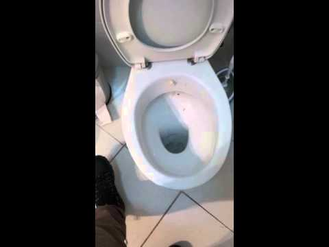 Carbonated Water Cleans A Toilet